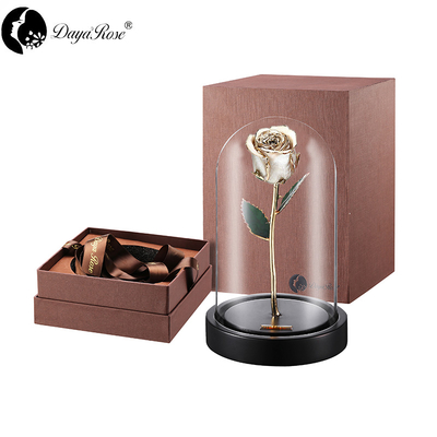 Daiya Gold Rose Bud/champagne+The Glass Cover