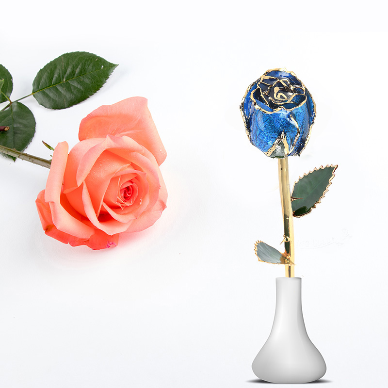 Daiya Gold Rose Bud (blue)