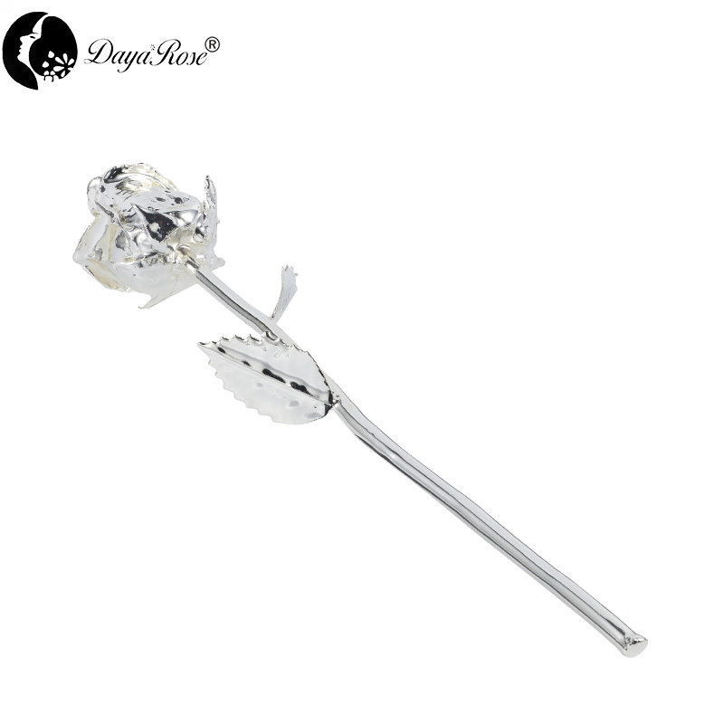Daiya Bud Venus Rose in Silver /The Glass Cover